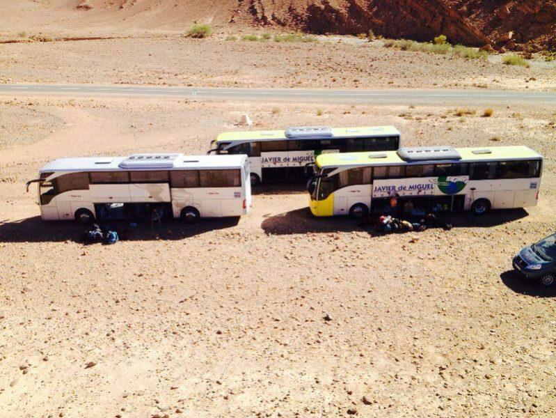Autobuses de excursión