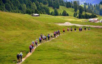 Gente de ruta en el campo